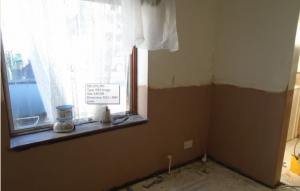 Rising Dampness in Property in South West London