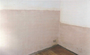 Dampness on walls