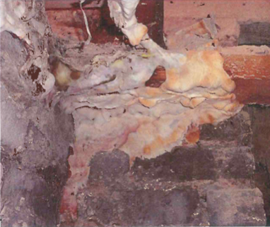 Dry Rot and Damp Proofing treatments 1